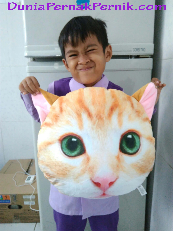 testimoni-bantal kucing